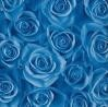 Rosas de olvido
